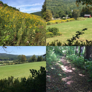 Views of the Tyringham Valley